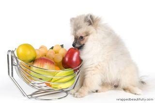 Got-fruit_no_caption